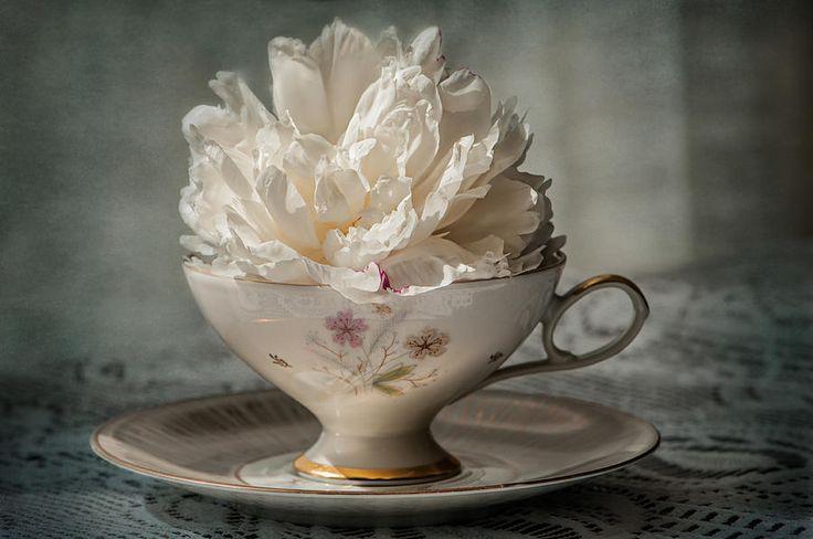Tea Photograph - Tea Time by Maggie Terlecki