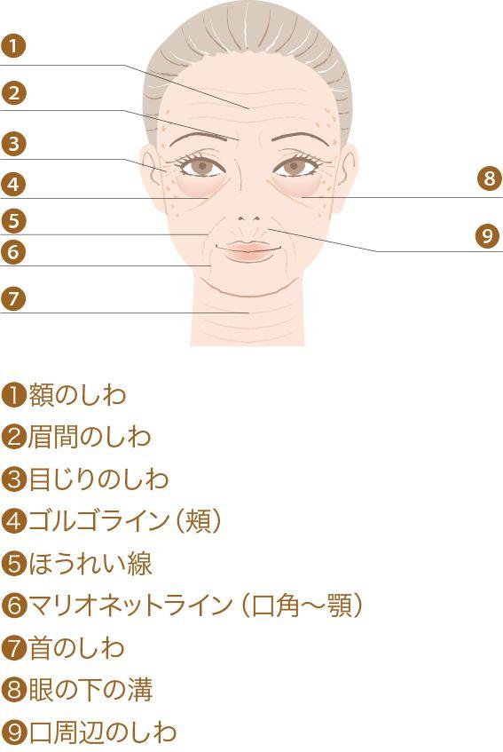 医療機関でできるしわの治療|ガルデルマの美容医療情報サイト