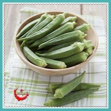 100 Okra Seeds Green Healthy Vegetable Green Delicious Lovely Okra Seed(China (Mainland))