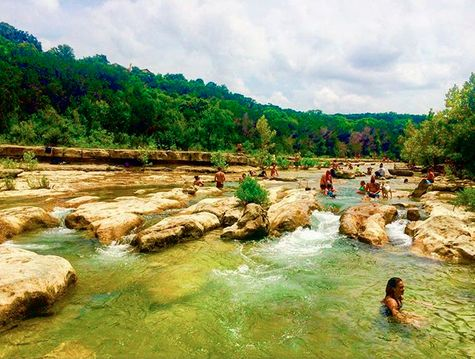1000 images about austin texas on pinterest austin for Barton creek nursery