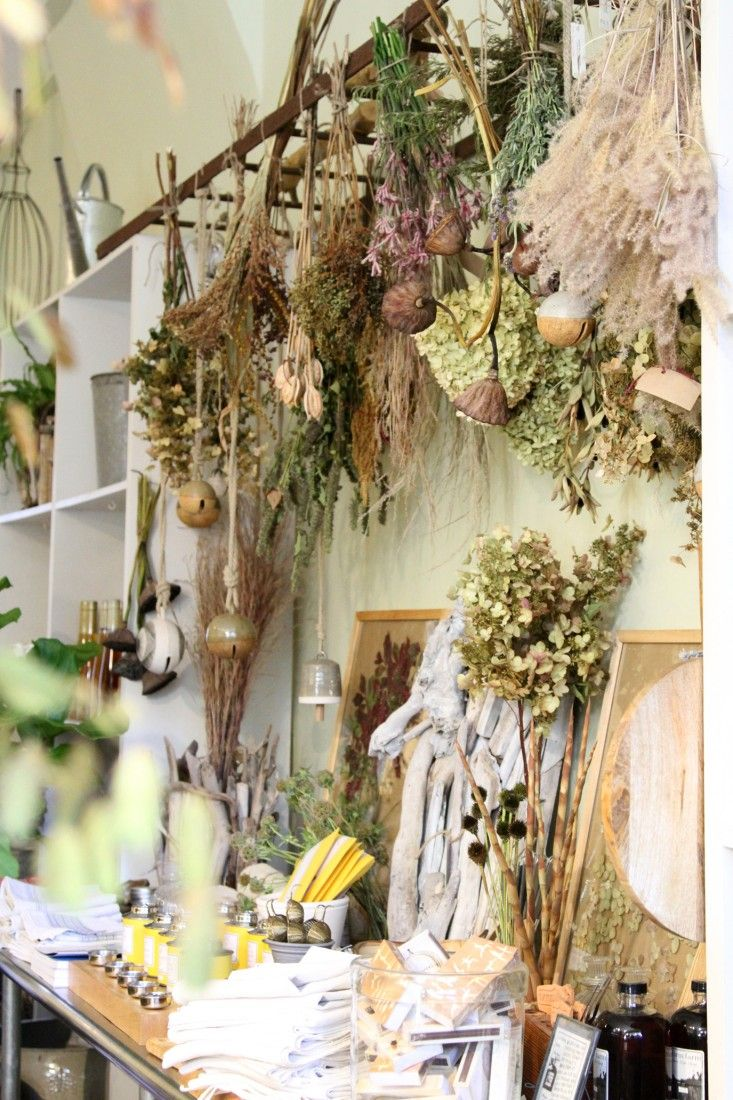 Brown is a color, too. Beautiful dried-flower slideshow from Gardenista.