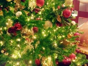 クリスマスのデコレーションは、本場海外のものが充実しているIKEAやコストコのツリーやデコレーションで揃えてみたいですよね。IKEAでは本物のモミの木を買うことも出来る!?という訳で今回は、IKEAやコストコのクリスマス関連のグッズについて調べて見ることにしました。