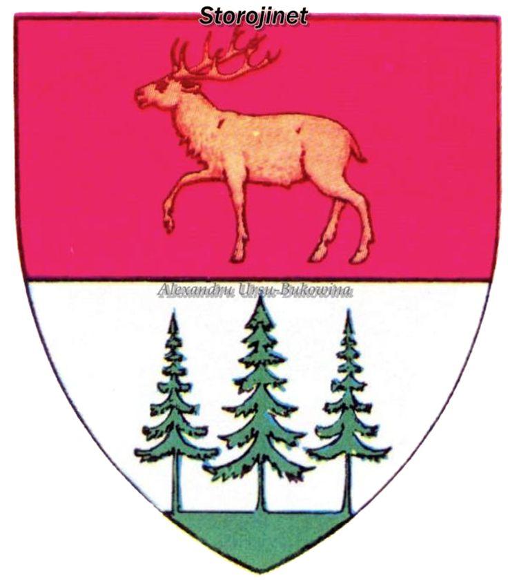 Ținutul Suceava. Județul Storojineț.