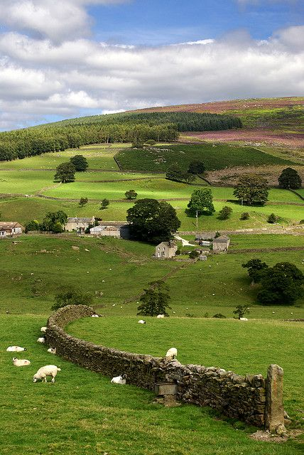 I'd like to take a trip to Yorkshire Dales, UK and re-read James Herriot's books