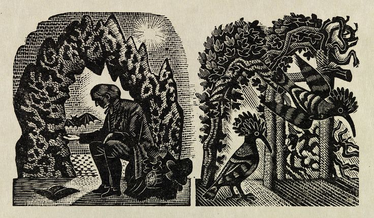 Illustration, by Eric Ravilious, for a later edition of the Natural History of Selborne by Gilbert White. Wood engraving. UK, 1937.