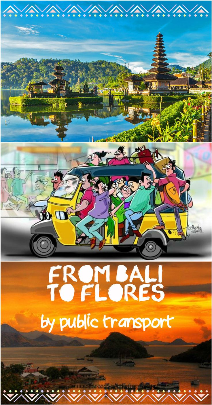 How to get from Bali or Lombok to Flores island by public buses and ferries. Complete transport bus; route, prices, schedule.