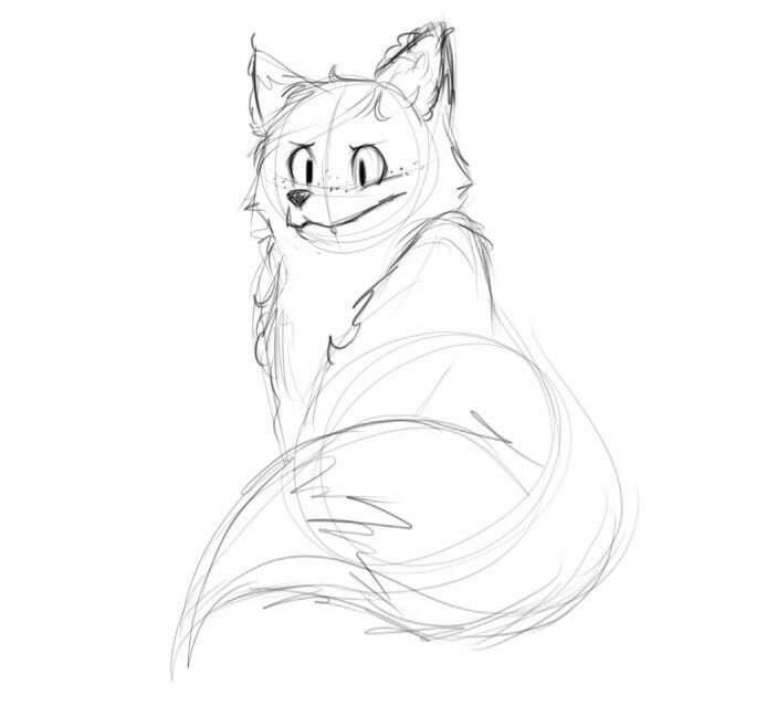 Cute Fox  #cutie #fox #animal #drawing #sketch #art