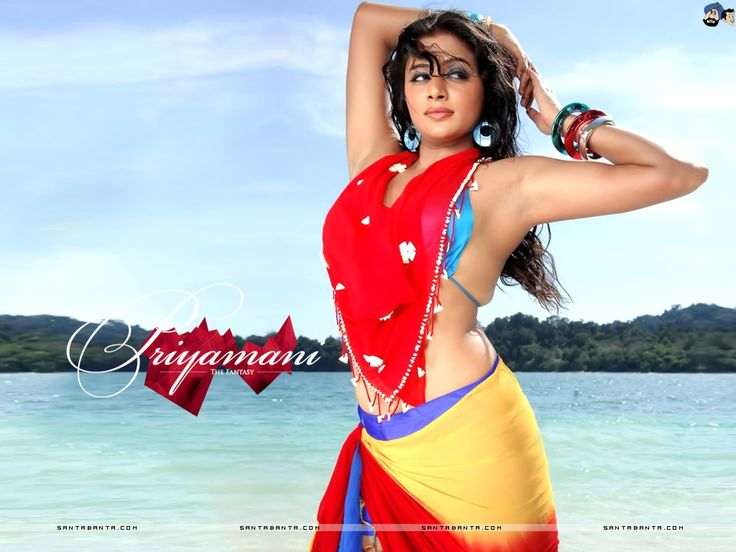 Priyamani Wallpaper #4