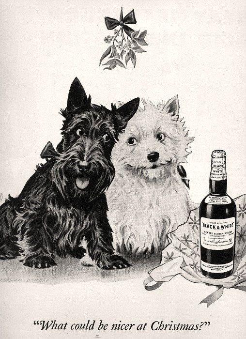 vintage 1943 advertisement scotty dog black by FrenchFrouFrou, $12.95