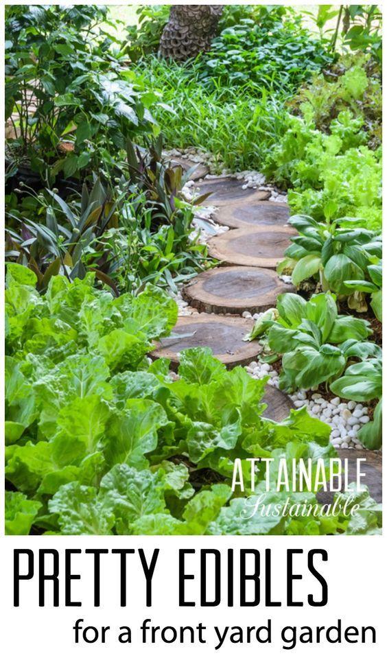 Grow a pretty front yard vegetable garden. Homestead ~ urban farm ~ urban garden ~ edible garden