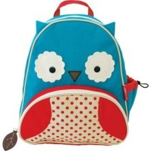 This and the matching lunch box for daycare later on. I love, love, love skiphop.com.
