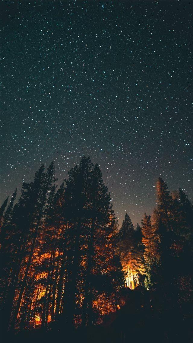 Night in woods iphone wallpaper