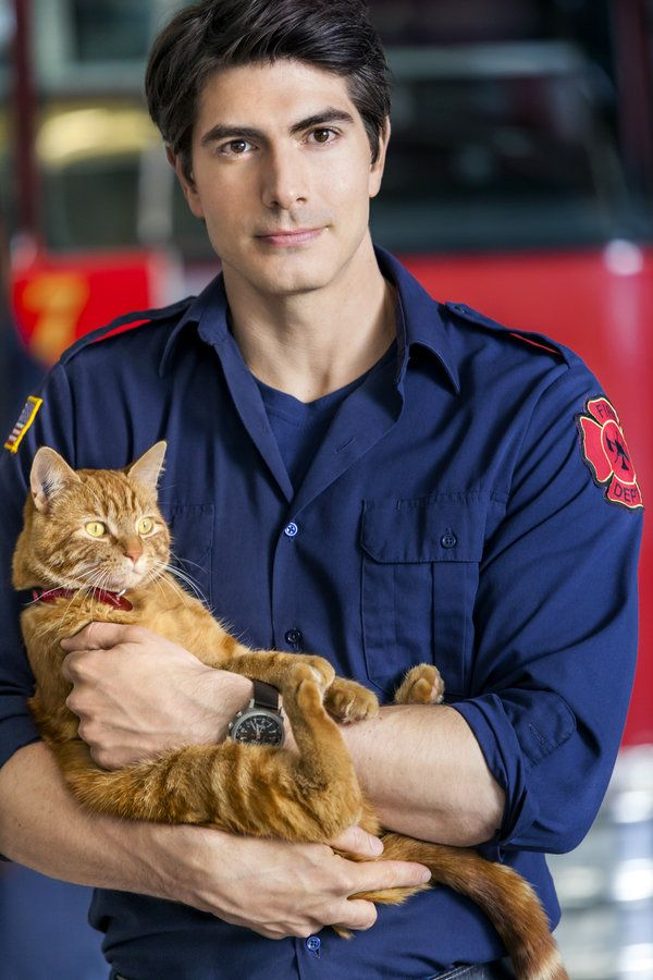 LOL @ Cat expression part 2  :-D :-D Hallmark's Nine Lives of Christmas . . Hero
