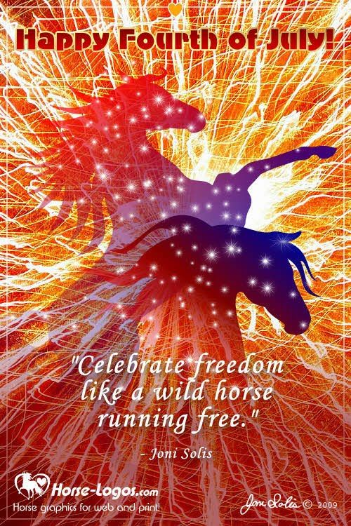 4th july freedom run lenexa