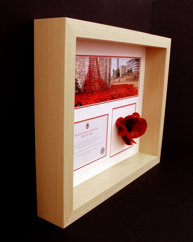 Tower of London Poppy display frame in natural