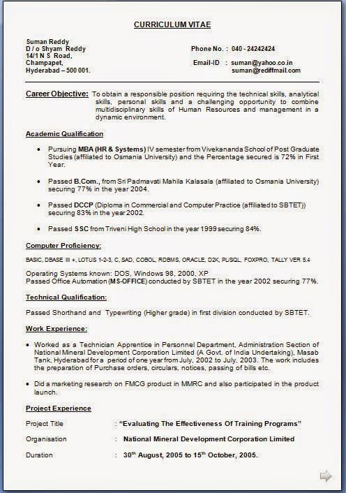 it resume examples Download Free Excellent CV \/ Resume - resume examples download