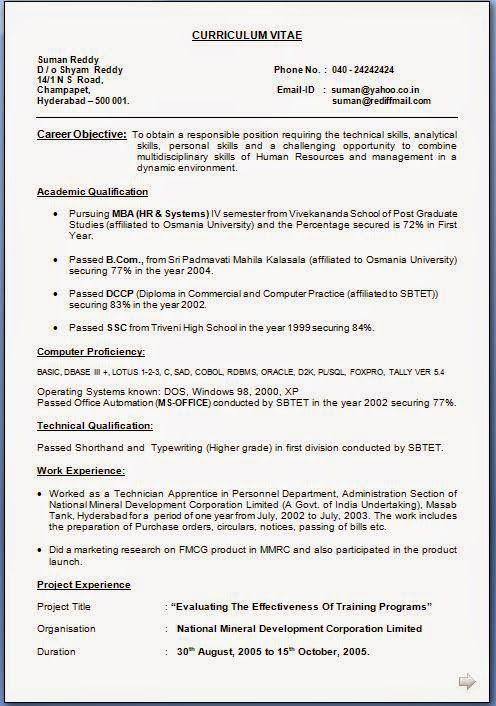 it resume examples Download Free Excellent CV Resume – Resume Curriculum Vitae Example
