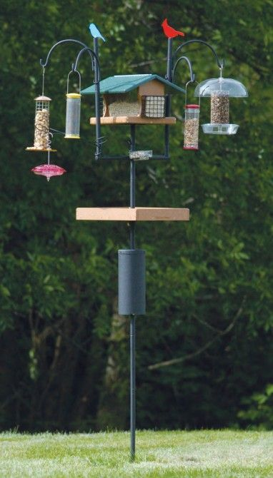 A variety of idea's for bird feeding stations. Full pdf. version on site with some great recommendations for making the back yard feeder the best it can be. Takes a few minutes for the pdf file to download but worth the time.