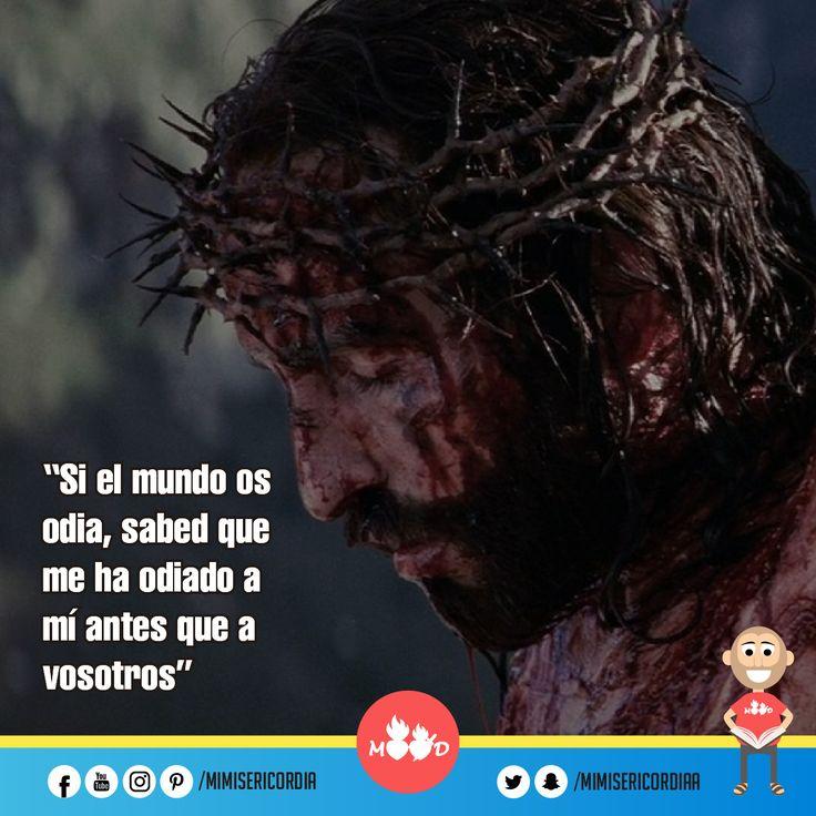 """""""Si el mundo os odia, sabed que me ha odiado a mí antes que a vosotros"""". (Jn 15, 18-21)"""