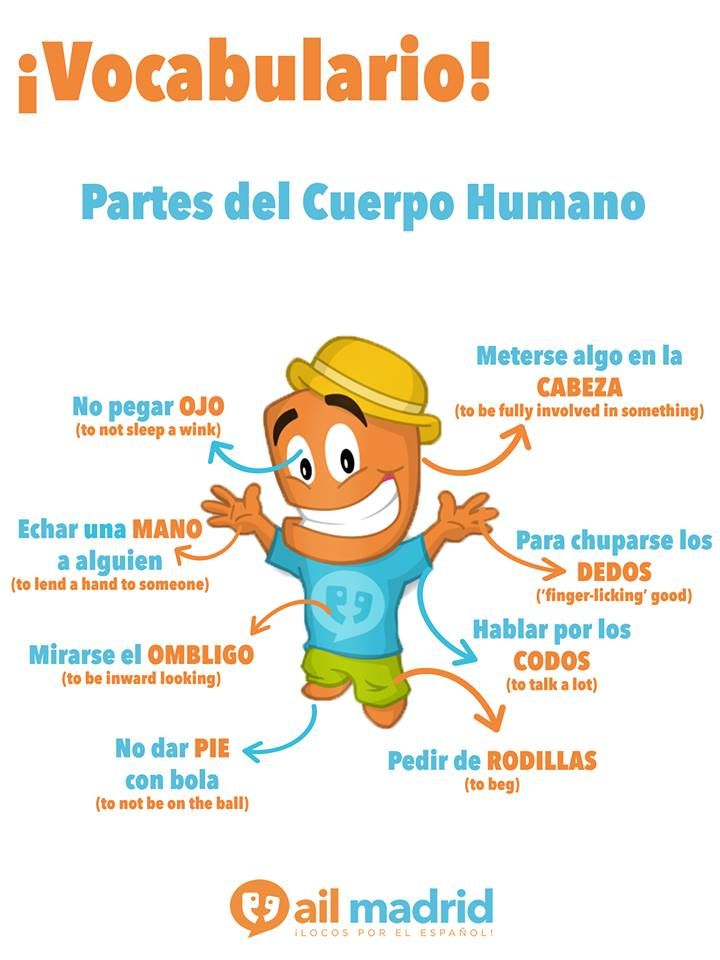 Diviértete con este ejercicio, mezclando vocabulario con frases hechas :) ¿Conoces más frases relacionadas con el cuerpo? #vocabularioespañol #aprendeespañol #fraseshechas /// This is a really fun exercise - mixing vocabulary with #Spanish phrases! Can you think of anymore phrases relating to the body? #SpanishVocabulary #LearnSpanish #SetPhrases