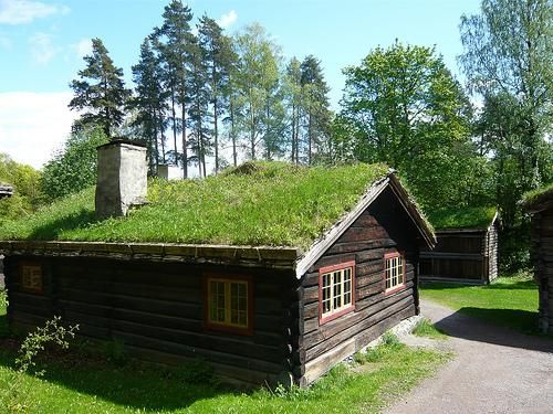 green roof Norway.jpg (500×375)