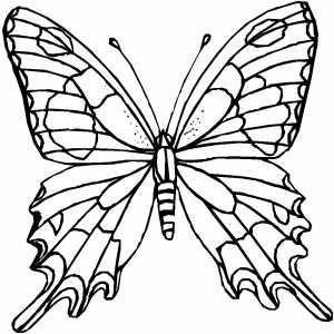 32 coloriage papillon imprimer vol 1121 revue de modes coloring pages