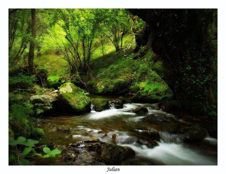 Río Burbia