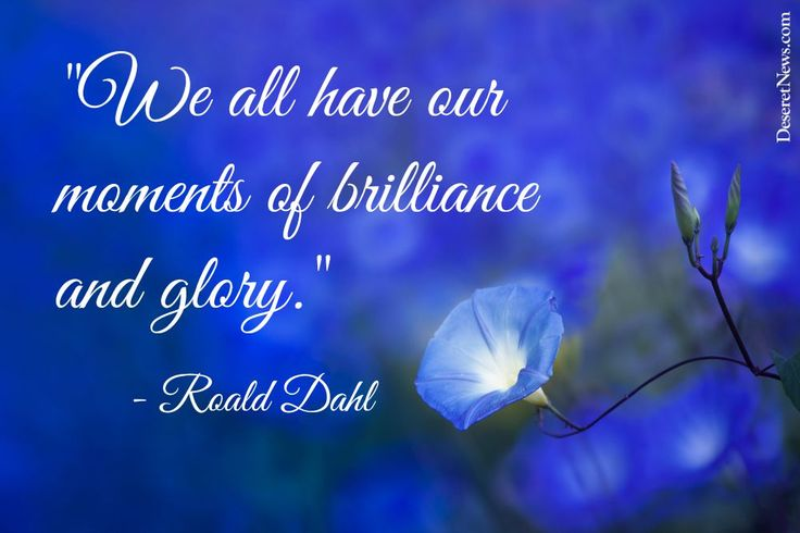 """""""We all have our moments of brilliance and glory."""" 