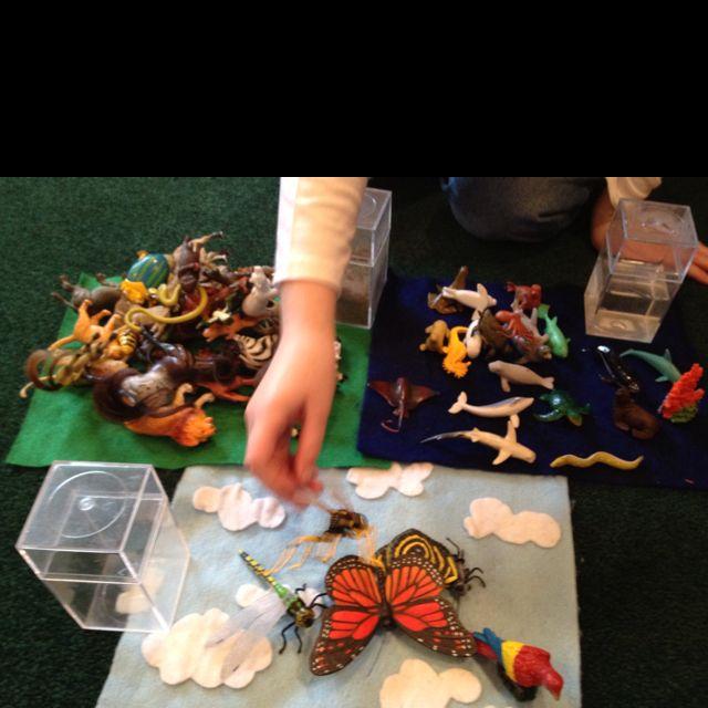 Montessori animal sort - land, water, air