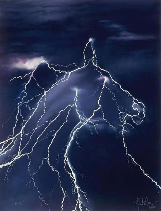 amazing. Yep. Lucky enough to be the first to capture a shot of that phenomenon known as horse lightning.