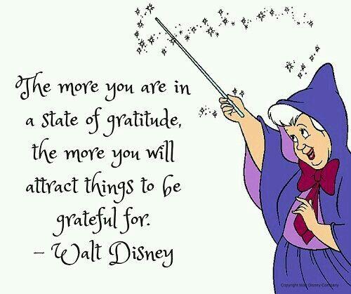 Gratitude Quote                                                                                                                                                                                 More