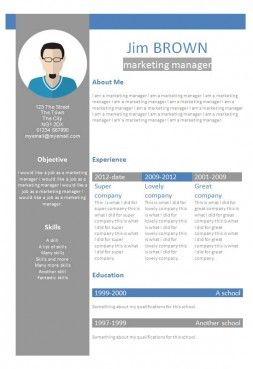 Profile CV template