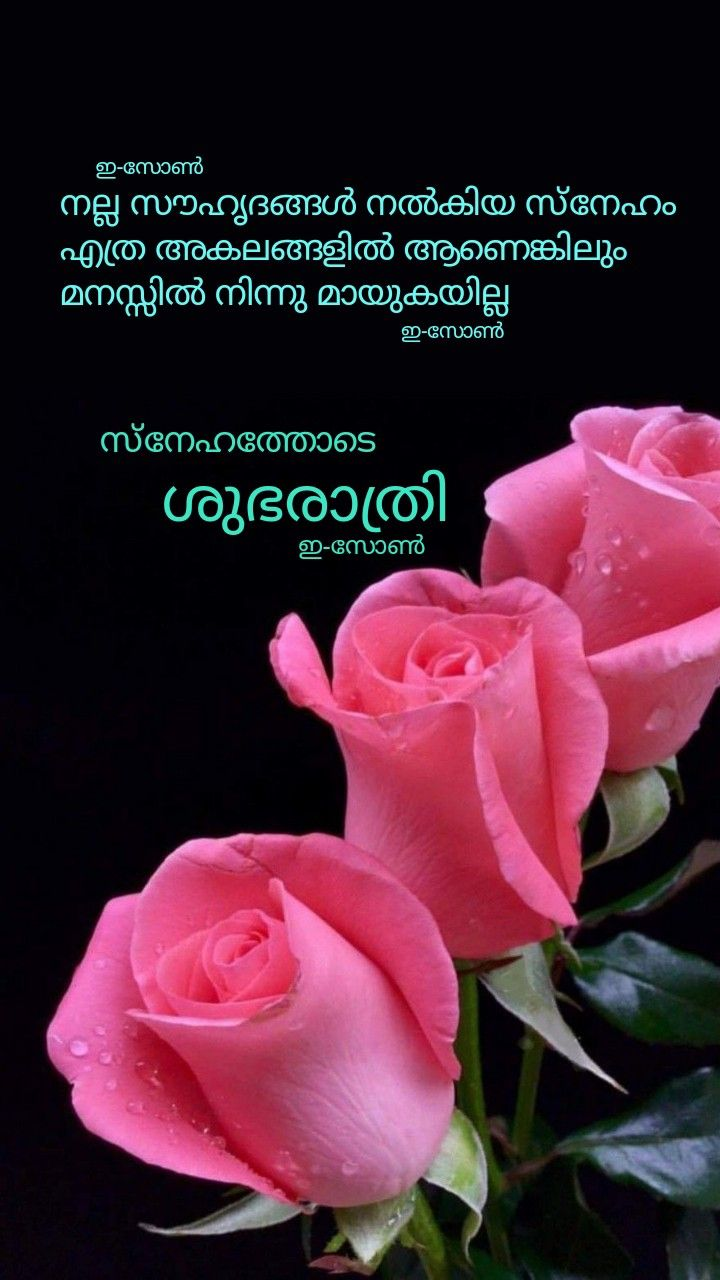 Pin By Eron On Good Night Malayalam Good Night Messages Good Night Sweet Dreams Night Messages