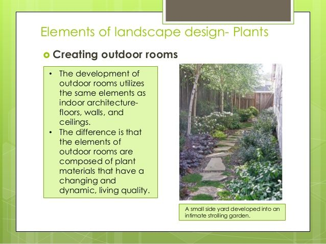 Landscape design elements google search garden design for Garden design principles