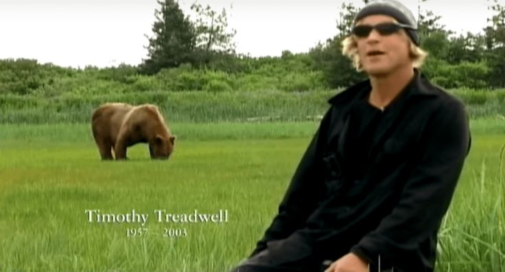 'Grizzly Man' Goes Free: Documentary about bear lover Timothy Treadwell will be available on LinkTV.org