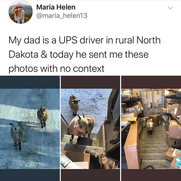 30 Epic Funny Tweets That Made The Whole Internet Laugh Out Loud Viralapk Com Funny Tweets Funny Monday Memes Funny Valentine Memes