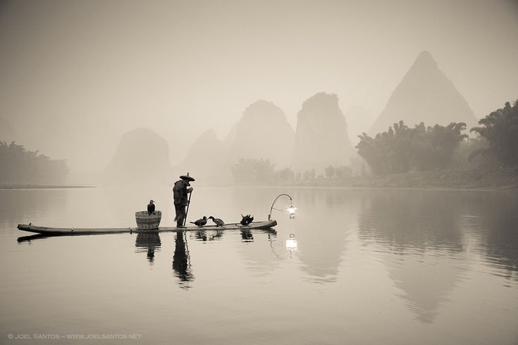 I've been extensively photographing this area in Guangxi province, China, since 2006 and witnessing the fast decay of the cormorant fisherman. The man in the foreground is over 90 and is one of the last in activity. The youngest fisherman are attracted by new and more profitable jobs, opening the way for the disappearing of a traditional craft and culture.