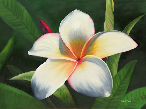 Tropical Plumeria Painting