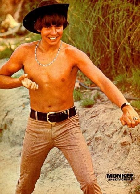 Davy Jones of the late 60's Band ~ The Monkees