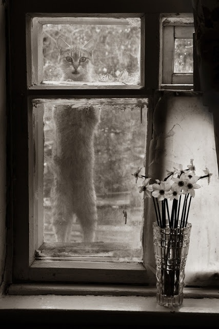 - Can I come in?