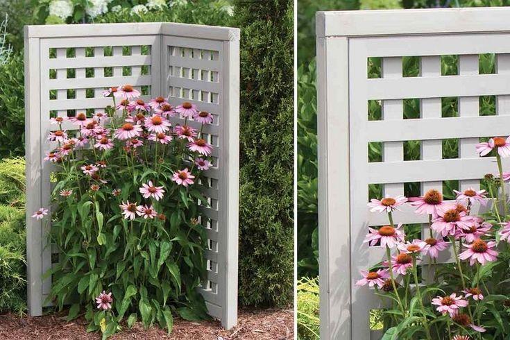 Great paravent garten klein holz wei lackiert ecke bepflanzt blumen Garten Pinterest