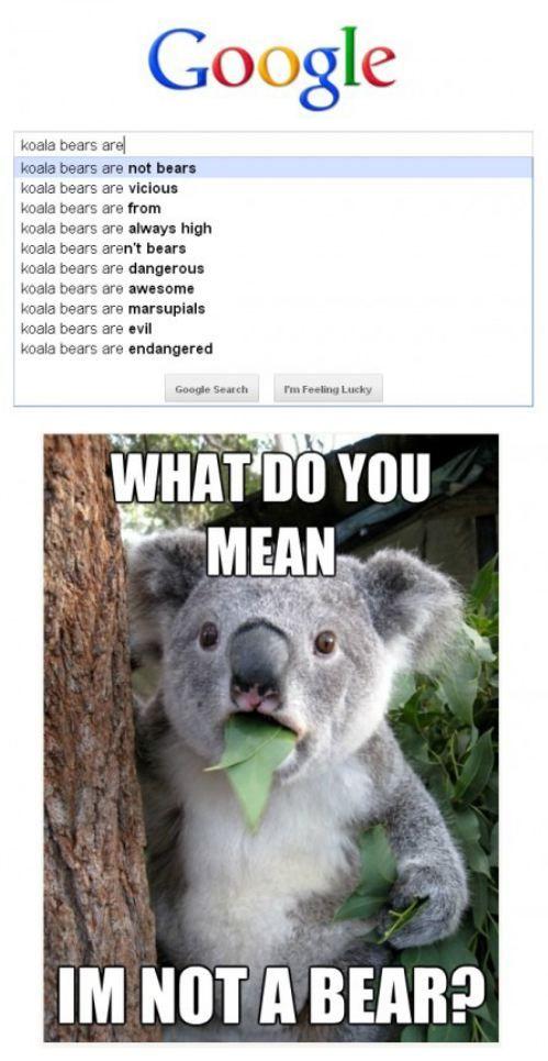 LOL! Happy Belated Australia Day!!!