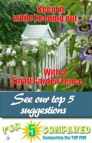 Small Garden Fence Ideas