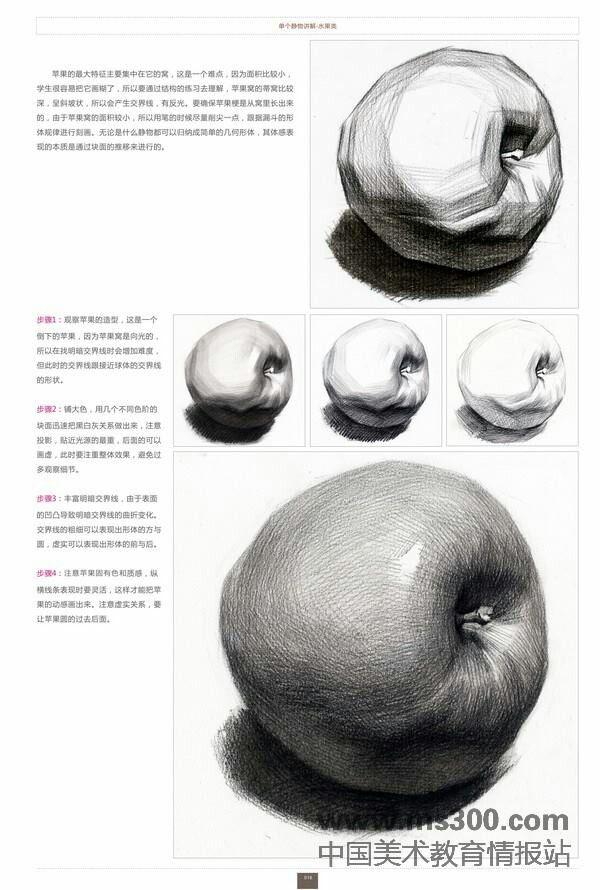 Academic drawing Apple dessin リンゴ デッサン