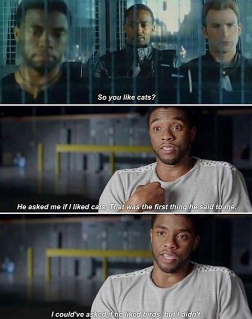 I just want a bunch of Marvel shorts where the Avengers just sit around insulting each other.