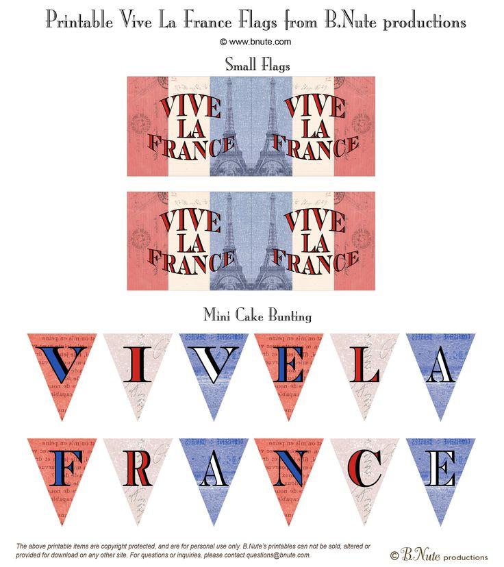 Best 25 France flag ideas on Pinterest  Flag of paris Flag of