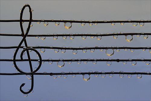...: Music Note, Waterdrop, Dew Drop, Strange Places, Raindrop, Dewdrop, Bathroom Decor, Water Droplets, Rain Drop