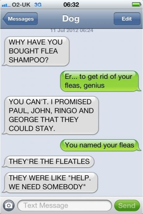 fleatles:  Internet Site, Laugh,  Website, Web Site, Dog Texts, Funny Stuff, Dogs Texts, Things, Fleatl