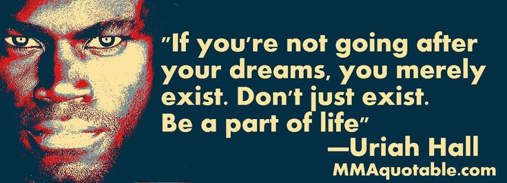 Motivational Quotes with Pictures: If you're not going after your dreams, you merely ...