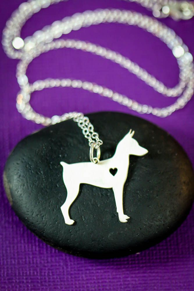 SALE - Miniature Pinscher Necklace - Dog Pendant - Min Pin - Pincsher Dog Breed - Sterling Silver Charm - Memorial - Mothers Day Gift - Loss by IvyByDesign on Etsy https://www.etsy.com/listing/269604143/sale-miniature-pinscher-necklace-dog